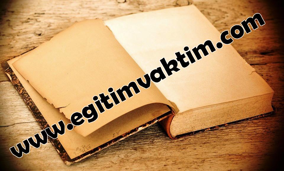 Türk-İslam Devletlerinde Önemli Saray Görevlileri